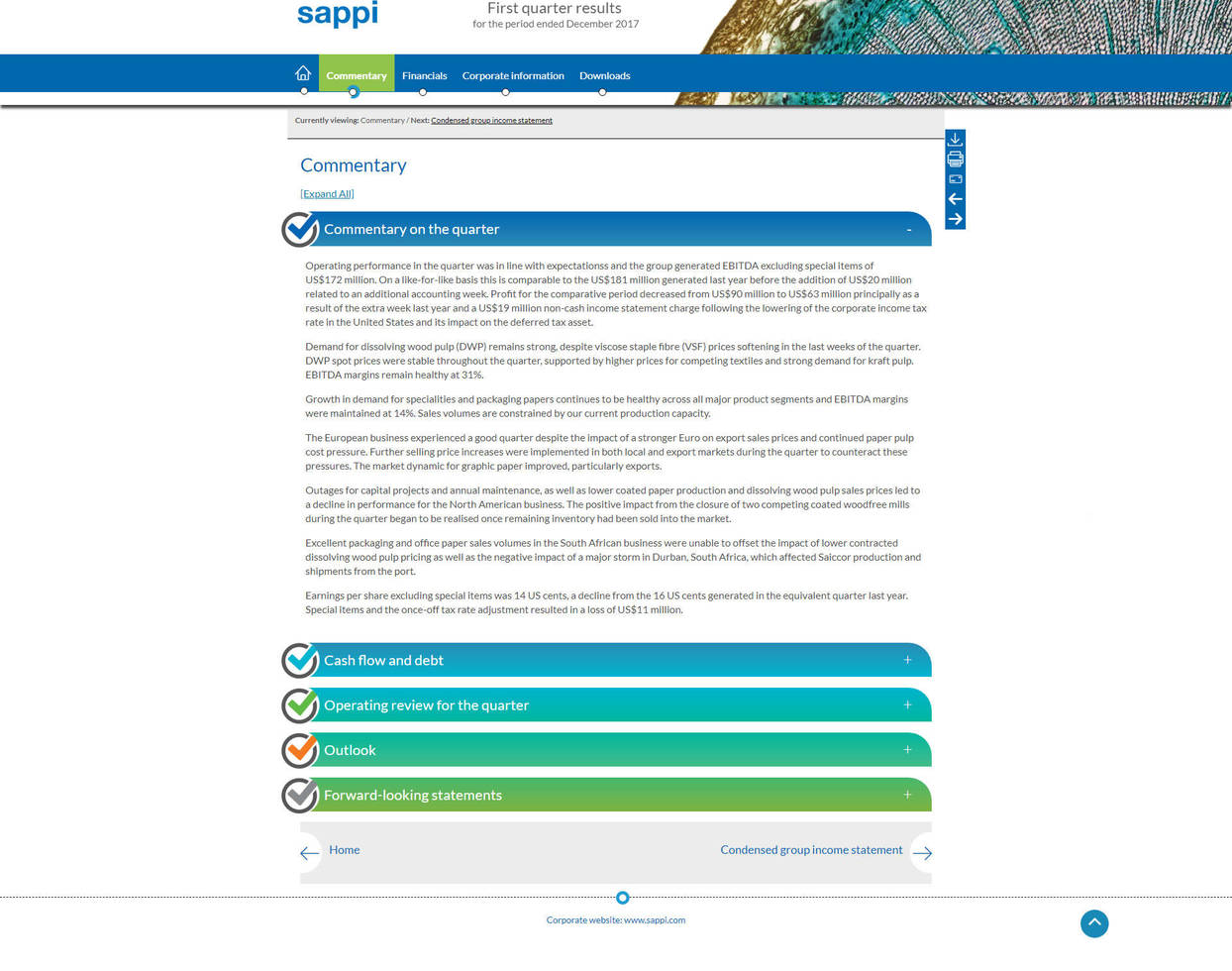Sappi online results commentary