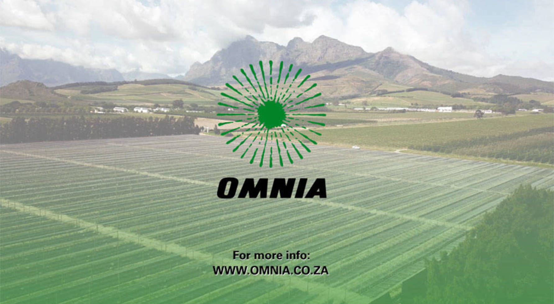 Omnia Overview Results - Screenshot 4