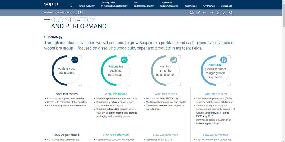 Sappi - Annual Integrated Report 2019 - Our Strategy And Performance